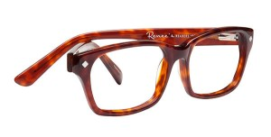 reneesreaders_Donna_06_017_readingglasses1_grande